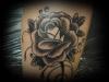 rose1-1